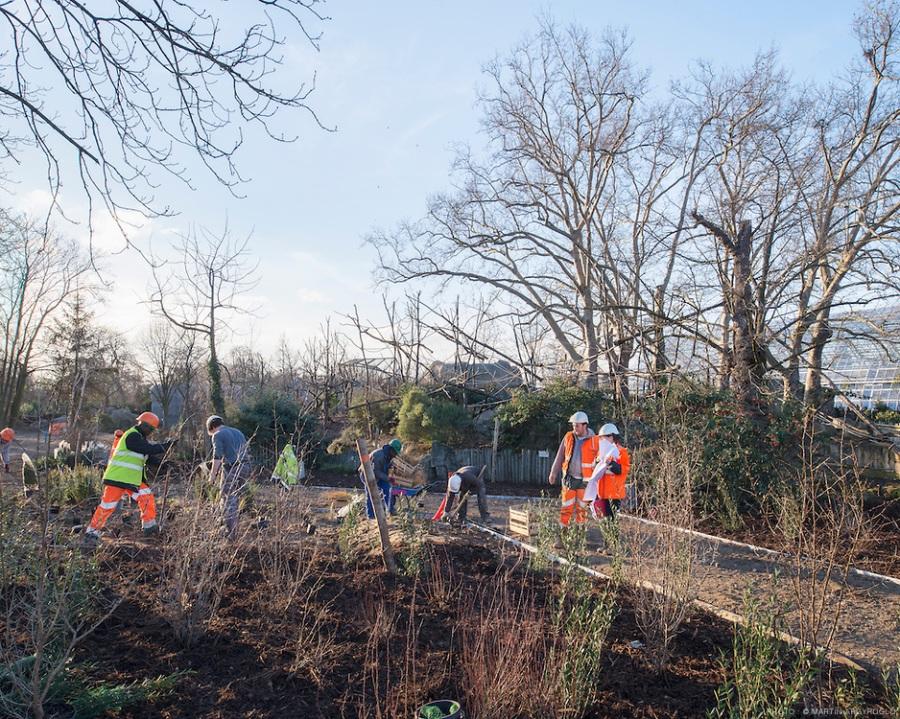 chantier du Parc zoologique de Vincennes (zoo de Vincennes) - 03