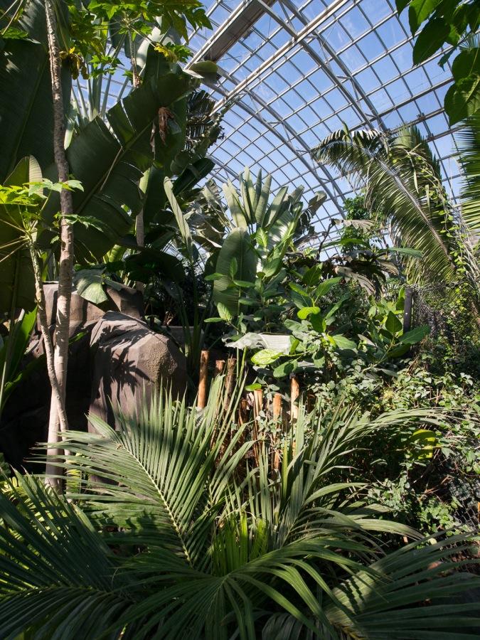 La Grande Serre (serre tropicale) - Parc zoologique de Paris (zoo de Vincennes)