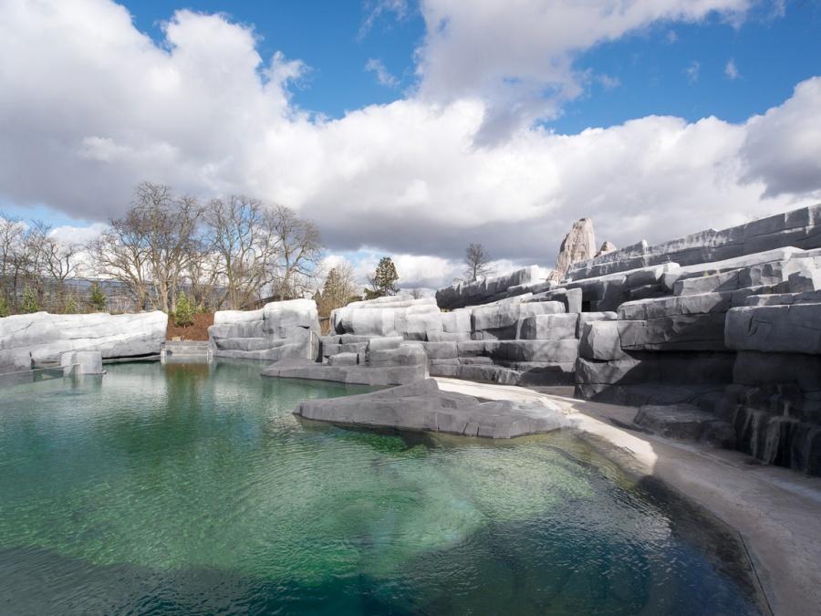 chantier du Parc zoologique de Paris (zoo de Vincennes) - 21/02/2014